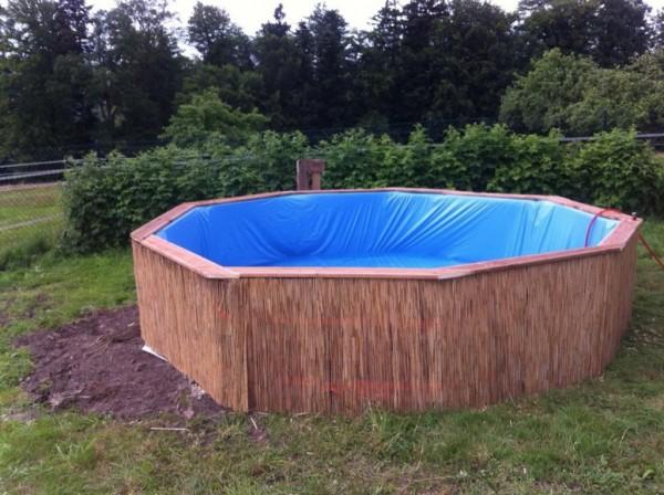 tee ise bassein 1